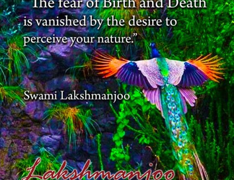 The fear of birth and death is vanished by . . .