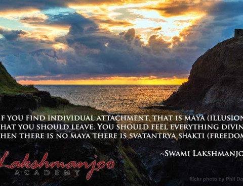 A very important difference in Shaivism