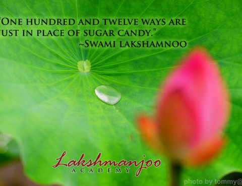 In place of sugar candy... the essence of all Tantras
