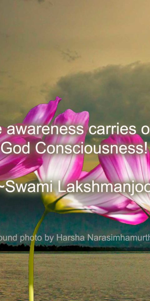Triple awareness carries one to God Consciousness! ~Swami Lakshmanjoo