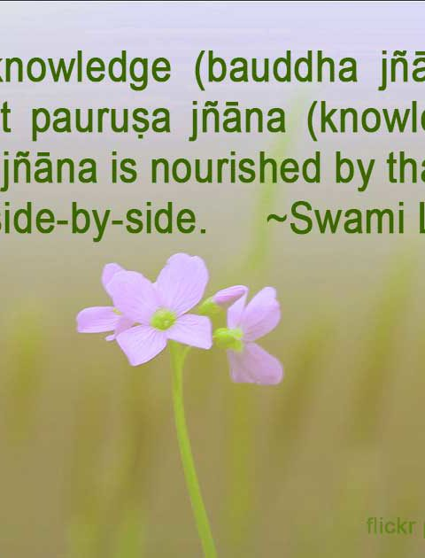 The important two kinds of Knowledge in Kashmir Shaivism