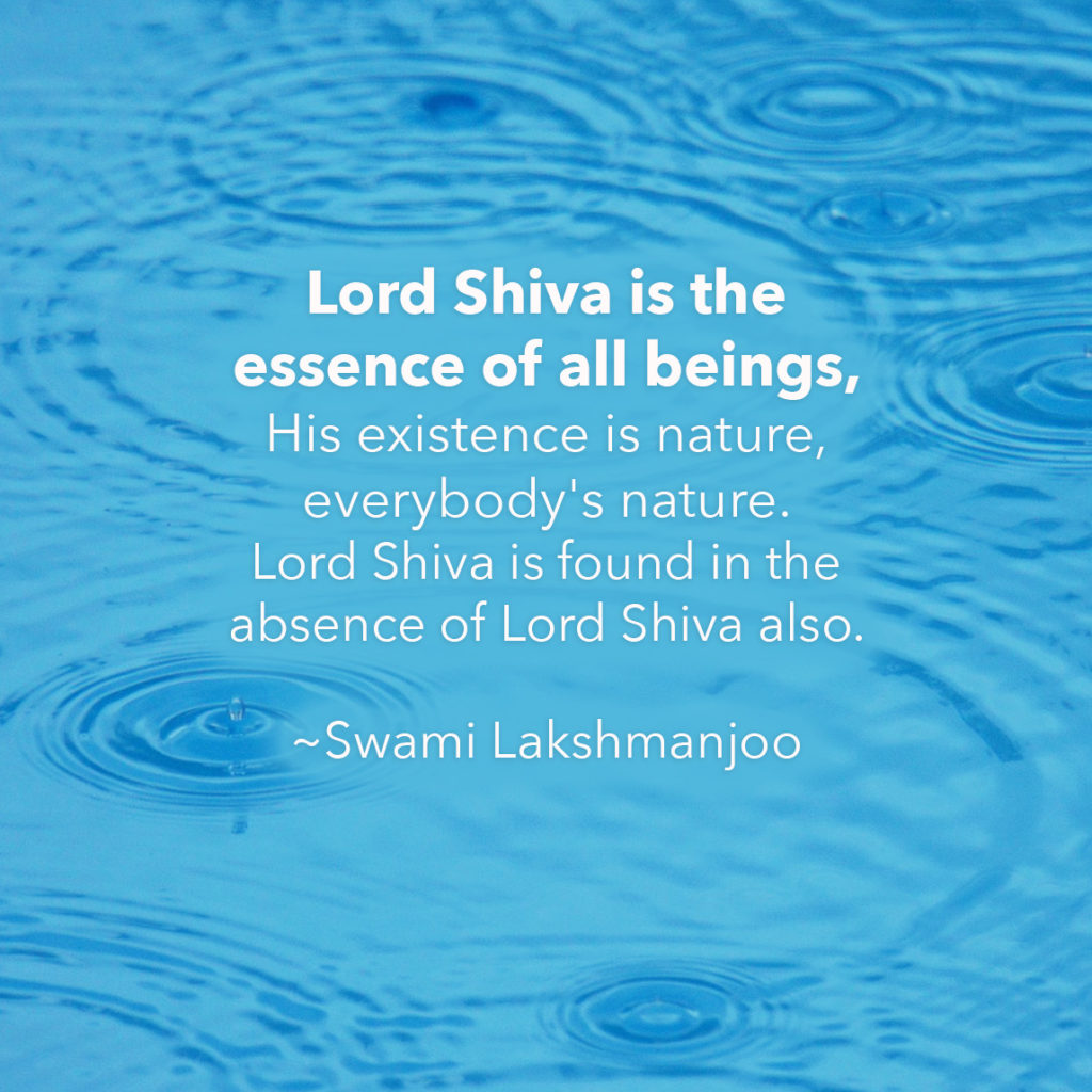What is the essence of all beings in Kashmir Shaivism