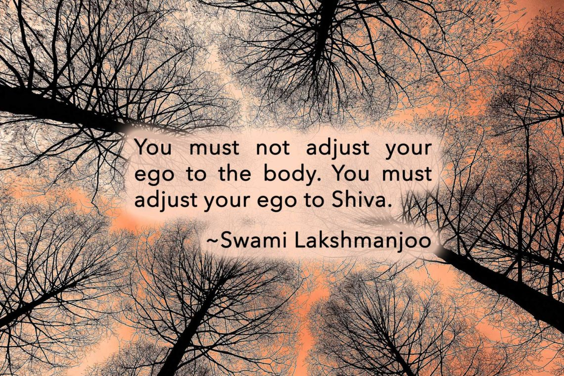 You must not adjust your ego to the body. You must adjust your ego to Shiva. ~Swami Lakshmanjoo