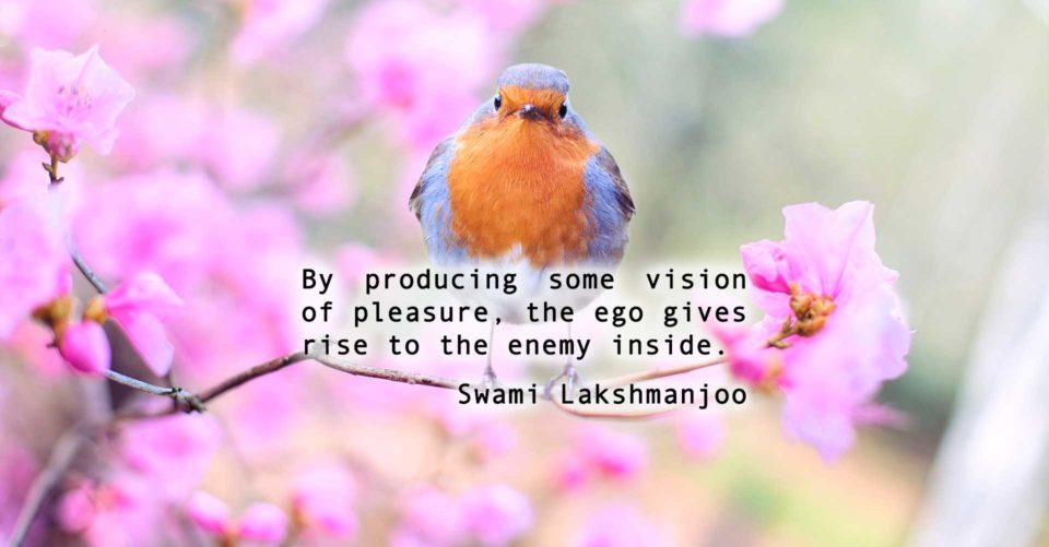 Who is this enemy inside of our consciousness?