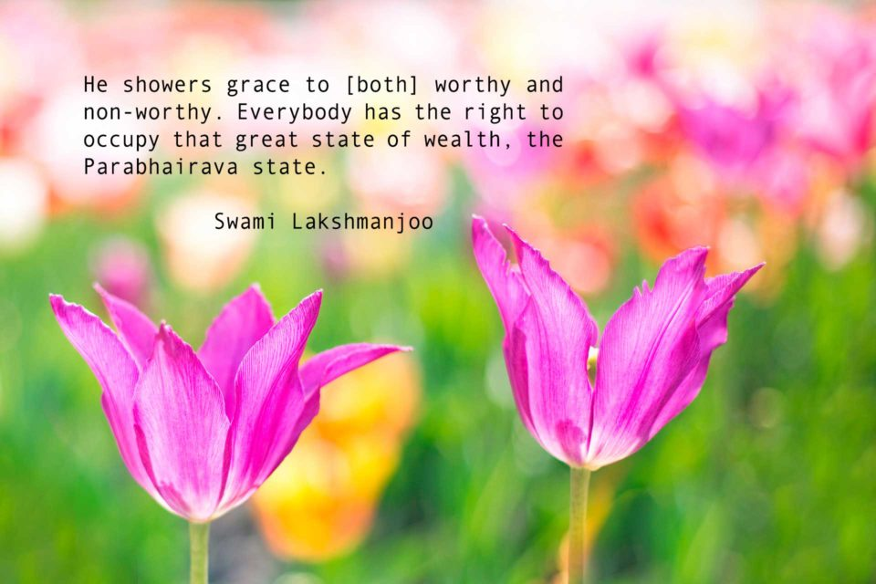 How He showers grace to both, worthy and non-worthy ~Swami Lakshmanjoo