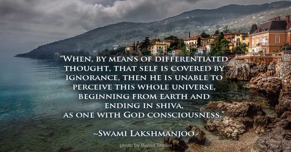 When by means of differentiated thought, that self is covered by ignorance... ~Swami Lakshmanjoo