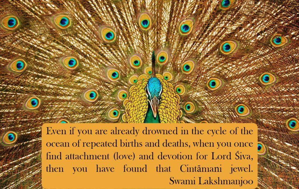 The MagicalJewel of Devotion in Kashmir Shaivism - Stava Cintamani